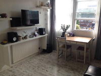 1 Bed flat (furnished) / bright, spacious and recently renovated / betwen Angel and Kings Cross