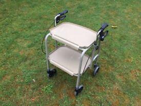 Combination Wheeled Trolley Walker.