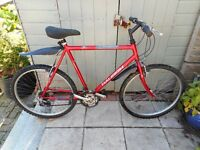 mans red raleigh fire fly 22 inch frame bike with lock