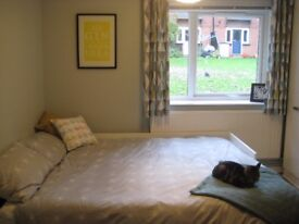 Beautiful double room in clean and welcoming flat - £495pcm incl all bills - long term now available