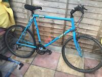 Large Retro Raleigh Mountain Bike 21 Speed