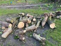 Free logs to take away
