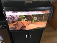 Aqua one ar850 fish tank aquarium 165ltr