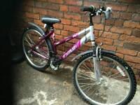 New condition ladies bike