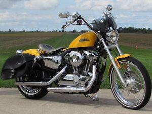 2013 harley-davidson XL1200V Seventy-Two   Chrome Yellow Pearl & London Ontario image 4
