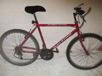 15 speed mountain bike ,