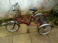 pashley tri 1 folding tricycle