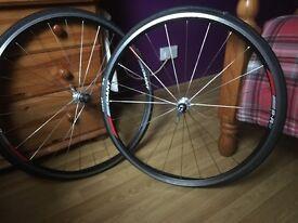 Giant rims/wheels