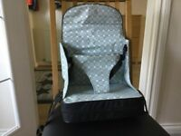 Baby Polar Gear Go Anywhere Booster Seat