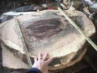 Wood, wood turning, timber