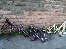 Dawes Duchess Low Step Dutch Style Heritage Bike frames x 7