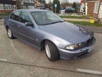 Grab a bargain.bimmer 528i auto with Mot till May.