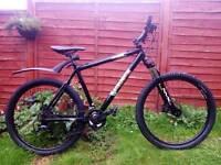 Iron Horse Maverick mountain bike