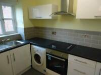 Lovely one bedroom flat - John Williams Close