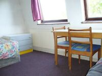 Large twin double room available