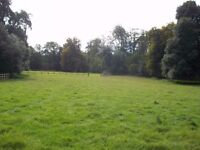 Private yard for 2 horses/ponies in very quiet location close to Weymouth, Dorset D.I.Y. only