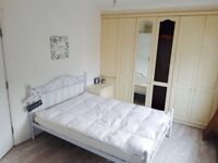 beautiful rooms available for immediate rent at barking
