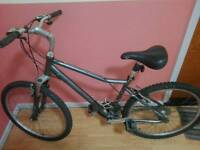 Raleigh voyager