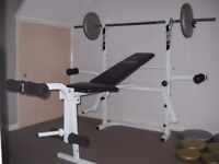 Body sculpture bench & barbell with clips and plates