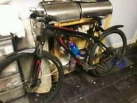 Selling dimnd back monton bike
