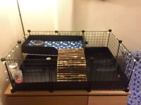 C&C cage for guinea pigs with a loft