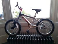 "Raleigh ""Zero"" 16 inch Kids Bike"