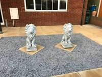 Large lions garden ornaments