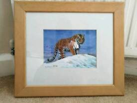 Limited edition tiger print
