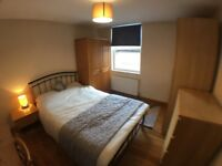 Great Room in Fabulous House - All Bills Included!