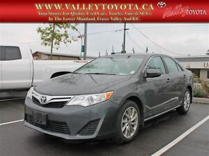 2013 Toyota Camry LE (#370)