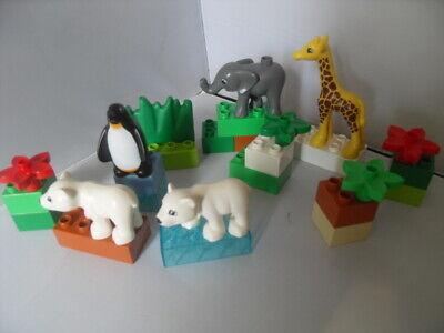 Bundle of Lego Duplo Bricks and Animals