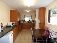 Outstanding 5 bed en-suite furnished house. Games room. Close to Uni S10