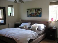 Stunning 1 bed in Balham- the best you will see!!!!!