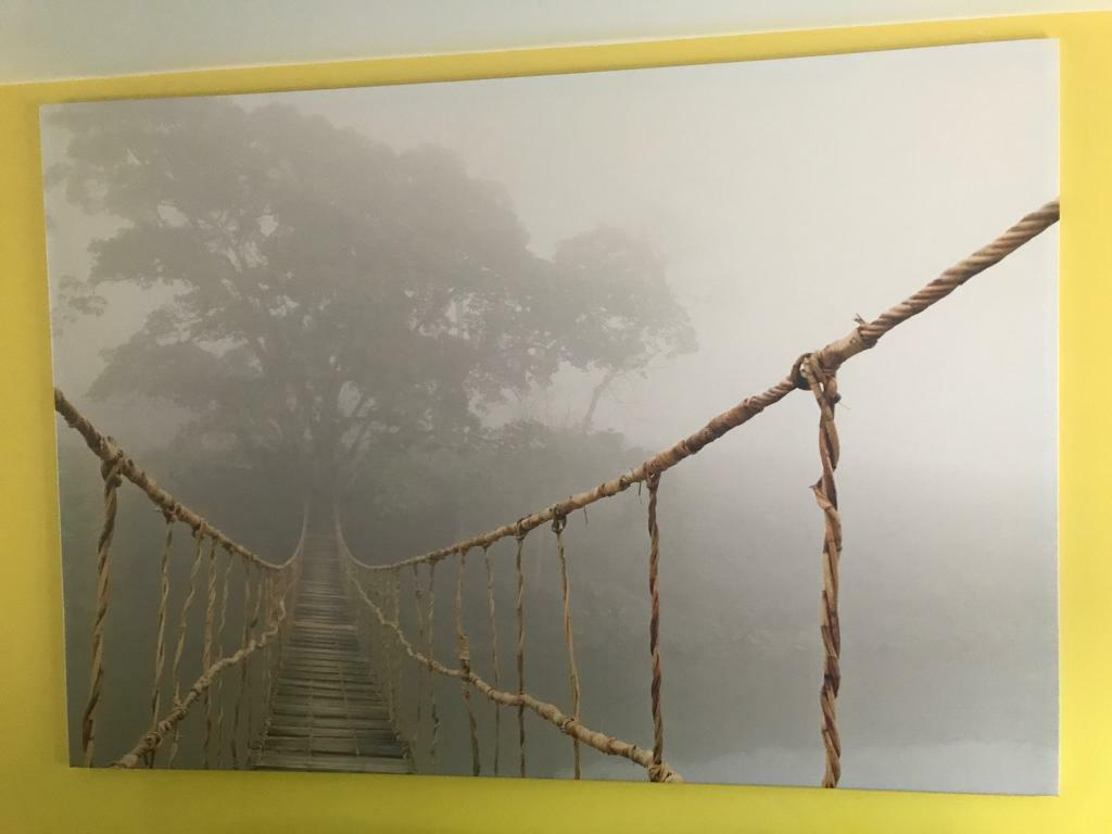 Ikea Large Rope Bridge Jungle Canvas In Alexandria West