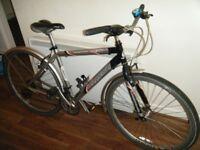 Barracuda Liberty Hybrid Bike