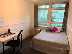 Cute double room with a GARDEN in Canary Wharf (East London)