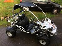 Quadzilla midi rv150 buggy
