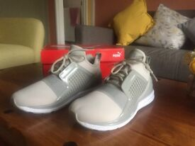 PUMA IGNITE LIMITLESS GREY DRIZZLE (Out of Stock) Size 8 £45
