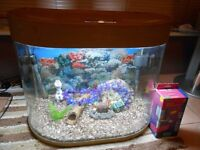AA Aquarium 70 Litre bow fronted aquarium full tropical set up