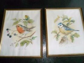 2 Framed Bird Prints by John Evans