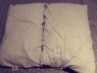 2 FREE primark basic pillows