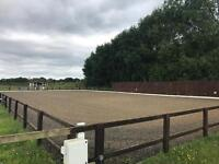 Arena and paddock management services