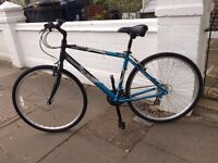 Adult bicycle in perfect condition (hardly used)