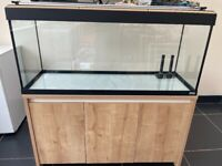 Fish tank and cabinet, Fluval Roma 240L