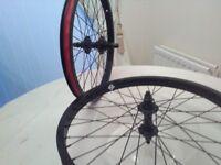 BMX Revenge Wheels