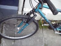 Raleigh Activator adult mountain bike
