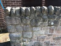 Stone wall and half moon coping