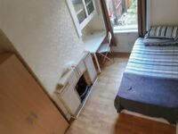 Lovely single room available in East London