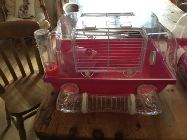 Pink Hamster Cage Pets At Home In Swansea Gumtree