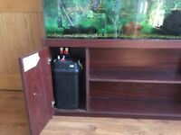 Large fish tank with a cabinet